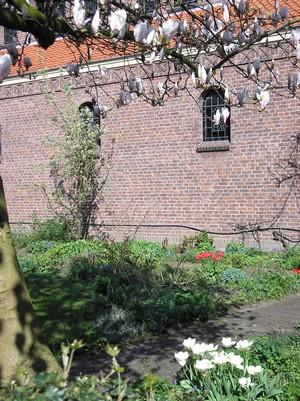 De binnentuin in het voorjaar