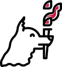 Logo 800 jaar Dominicanen
