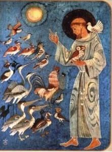 Afbeeldingen van Franciscus die tot de vogels spreekt